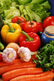 Composition with raw vegetables. Freshly washed vegetables with visible drops of water Royalty Free Stock Images