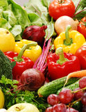 Composition with raw vegetables. Freshly washed vegetables with visible drops of water Stock Photography