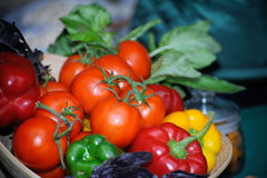 Composition with raw vegetables. Fresh vegetables on the table Stock Image