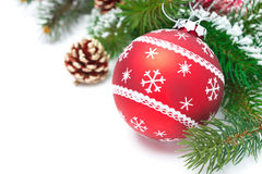 Composition with red Christmas ball and fir branches isolated stock photos
