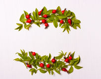 Composition of red flowers, berries and green leaves on a white Stock Photography