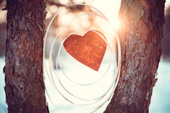 Composition with a red heart between trees Stock Photo
