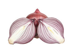 Composition of red onion in a cut. Royalty Free Stock Photography