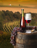 Composition with red wine Stock Image