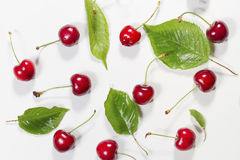 Composition of ripe cherries with leaves. Stock Photos
