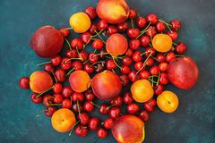 Composition Ripe Organic Summer Fruits Berries Sweet Cherries Nectarines Apricots Vibrant Colors on Dark Blue Background. Harvest Clean Eating Healthy Diet Royalty Free Stock Photography