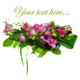 Composition of roses, cymbidiums and lisianthus Stock Image