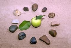 The composition on sand. Stock Photography