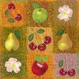 Composition sans joint avec des fruits et des fleurs Photo libre de droits
