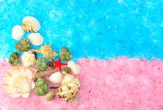 The composition of sea shells on the pink and blue salt Stock Images