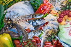 The composition of seafood Royalty Free Stock Photos