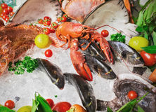 The composition of seafood and greens Royalty Free Stock Image