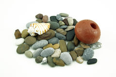composition with a seashell and cobbles, on white Royalty Free Stock Photos