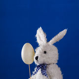 Composition with serious teddy rabbit and Easter egg Stock Photos