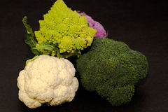Composition of several cabbages Stock Photos