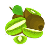 Composition of several kiwi. Ripe vector kiwifruits whole and slice appetizing looking. Group of tasty fruits colorful. Design for the packaging of juice Stock Images