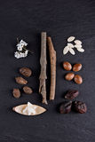Composition of shea butter and nuts, argan fruits and seed Royalty Free Stock Photography