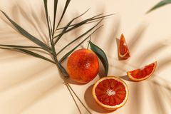 Composition of Sicilian oranges, whole and cut on a beige background royalty free stock image