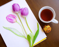 Composition of sketch of violet tulip and two live tulips tea and mini cake  on wooden background Royalty Free Stock Images