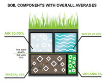 Composition of the soil. Components of the earth. Agroindustrial industry infographics. Percentage of water, minerals Royalty Free Stock Image