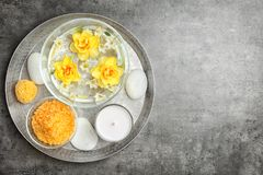 Composition with spa accessories and flowers. On grey background Royalty Free Stock Images