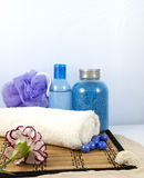 Composition of spa cosmetics Stock Photography