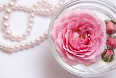 Composition of spa treatment on light background. Bowl with pink rose flower on water. Stock Photo
