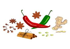 Composition of spices and herbs on the market. Assorted oriental spices - pepper, paprika, turmeric, ginger, cardamom, cinnamon, chili, clove, saffron, anise vector illustration