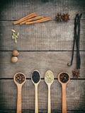 Composition of spices on wooden background: allspice, cloves, fennel, star anise, vanilla, cinnamon, green cardamom, nutmeg, black. Sesame. View from above royalty free stock images