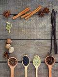 Composition of spices on wooden background: allspice, cloves, fennel, star anise, vanilla, cinnamon, green cardamom, nutmeg, black. Sesame. View from above royalty free stock photography