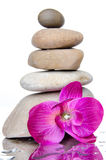 Composition of stacked pebbles with a purple flower Royalty Free Stock Photos