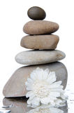 Composition of stacked pebbles with a white flower Stock Photography