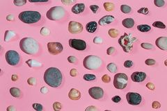 Composition of stones and seashells isolated on the pink background royalty free stock photography