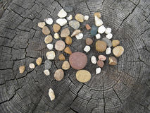 The composition of the stones on the stump. Still life. Pebbles Royalty Free Stock Photography