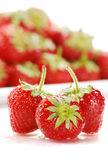 Composition with strawberries. On white background Stock Image
