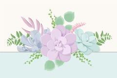 Composition succulente en bouquet de mélange de verdure de fougère de fleurs d'Echeveria Couleurs en pastel d'élément de feuillag illustration de vecteur