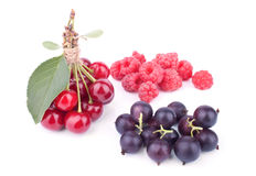Composition with summer fruits Royalty Free Stock Images
