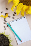 Composition with sunflowers and notepad Stock Photography