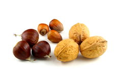 Composition of sweet chestnuts, hazelnuts and walnuts Stock Photos