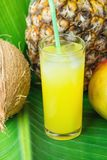 Composition Tall Glass with Freshly Squeezed Tropical Fruit Juice with Straw Pineapple Coconut Mango on Large Green Palm Leaf. Sunlight. Summer Vacation Royalty Free Stock Photography