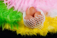 Composition of three beige eggs laying in netting on colored fea. Composition of three beige eggs laying in netting on yellow, white, green, rose feather Royalty Free Stock Photo