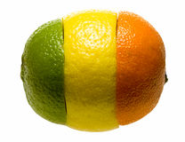 Composition of three citruses parts. Composition made of orange, lemon and lime pieces Royalty Free Stock Photography