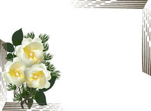 Composition with three light yellow roses Royalty Free Stock Photos
