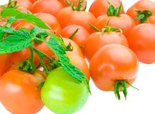 Composition of tomato Royalty Free Stock Photos