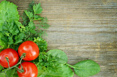 Composition of tomato with lettuce, parsley, dill  Royalty Free Stock Images