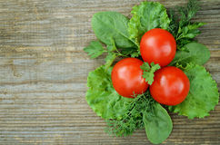 The composition with tomato, ltttuce,  parsley, dill and spinach Stock Photo