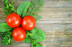 The composition of tomato with parsley, dill and spinach Royalty Free Stock Photos