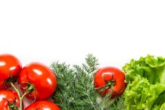 Picture with tomatoes. Royalty Free Stock Image