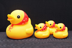The composition of a toy duck and her ducklings. The composition of a toy duck and her ducklings on a black background royalty free stock photography