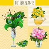 Composition trois florale dans des vases illustration stock